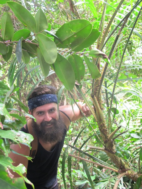 On one day, we decided to be less lazy and check out the jungle part of the island. This was Martin still happy before he got stung by a giant branch of thorns.