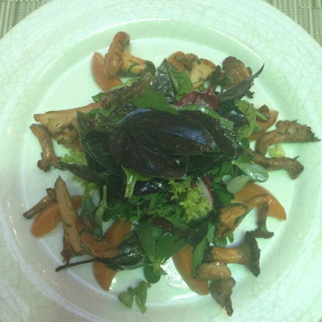 As a starter i chose the mixed herb salad with grilled chantarelles and apricots. It was so good i could eat this every day!